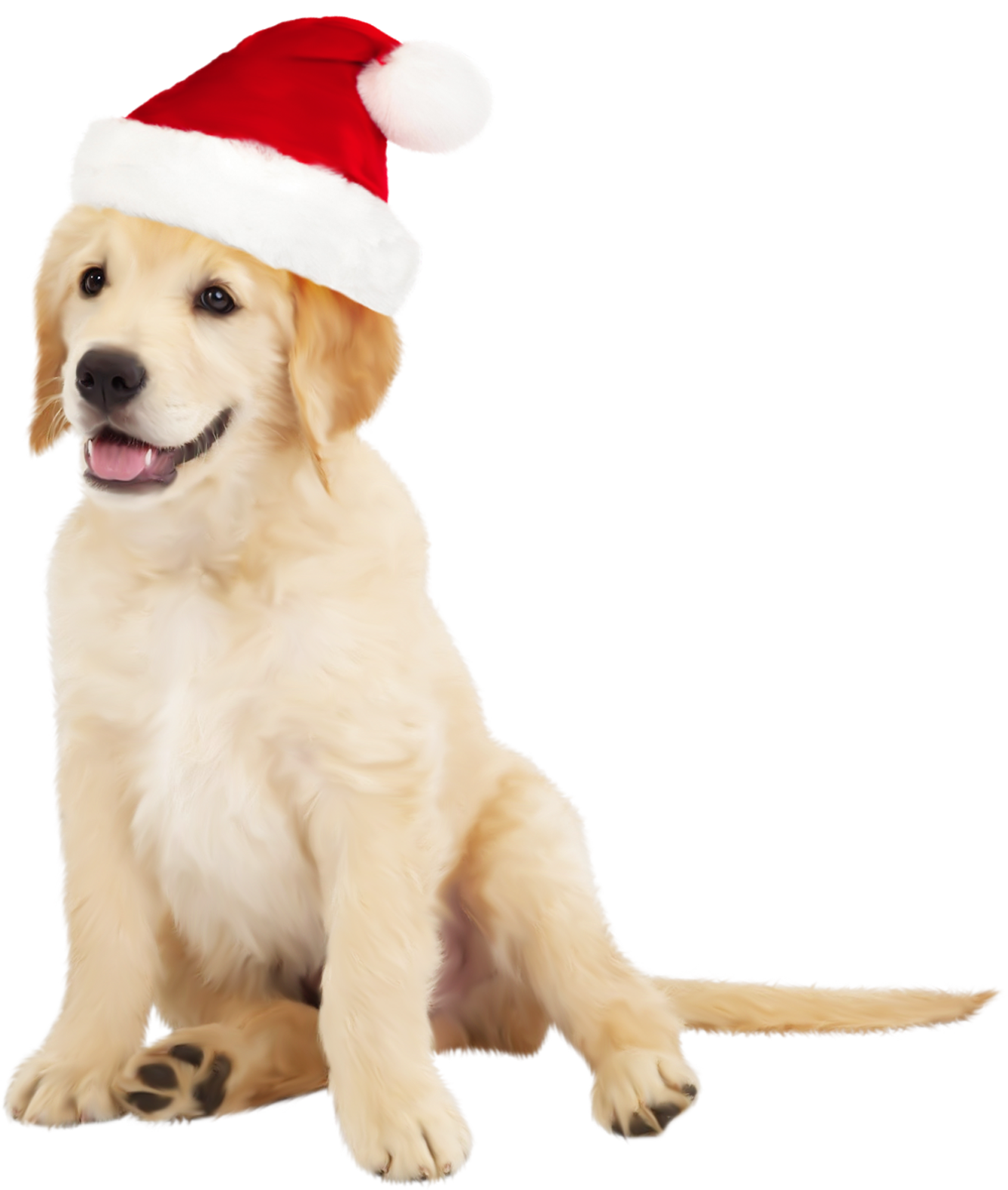 Cute dog clipart free clip stock Cute Dog with Santa Hat PNG Clipart - Best WEB Clipart clip stock