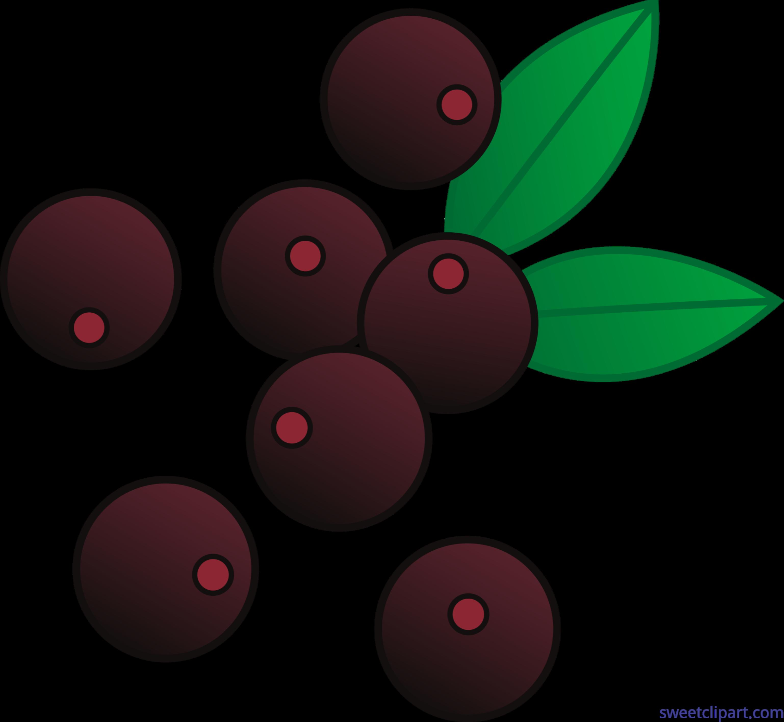 Christmas berries clipart banner Berries Acai Clip Art - Sweet Clip Art banner