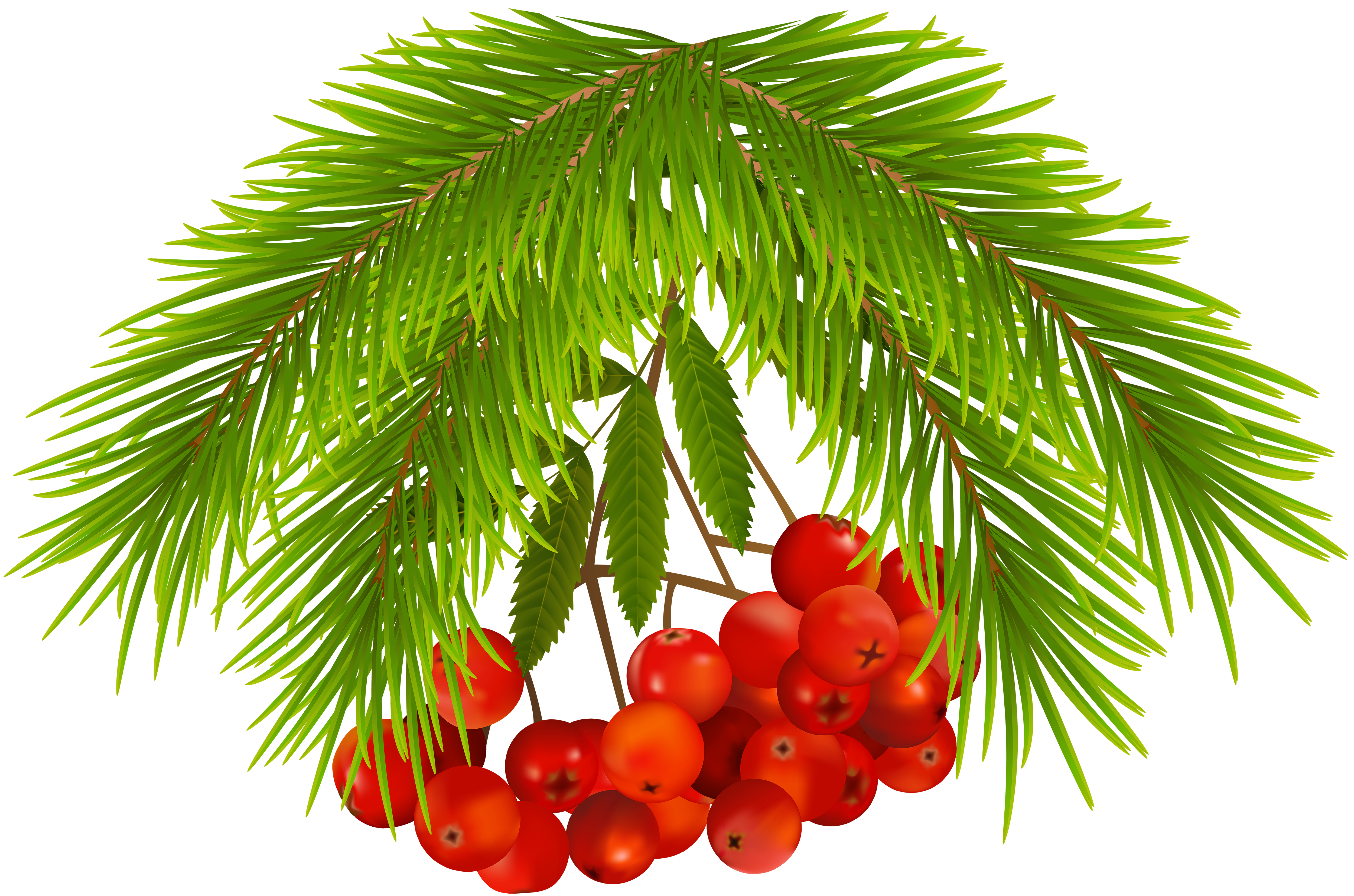 Christmas berries clipart png free Christmas Holly Berries PNG Clip Art Image | Gallery Yopriceville ... png free