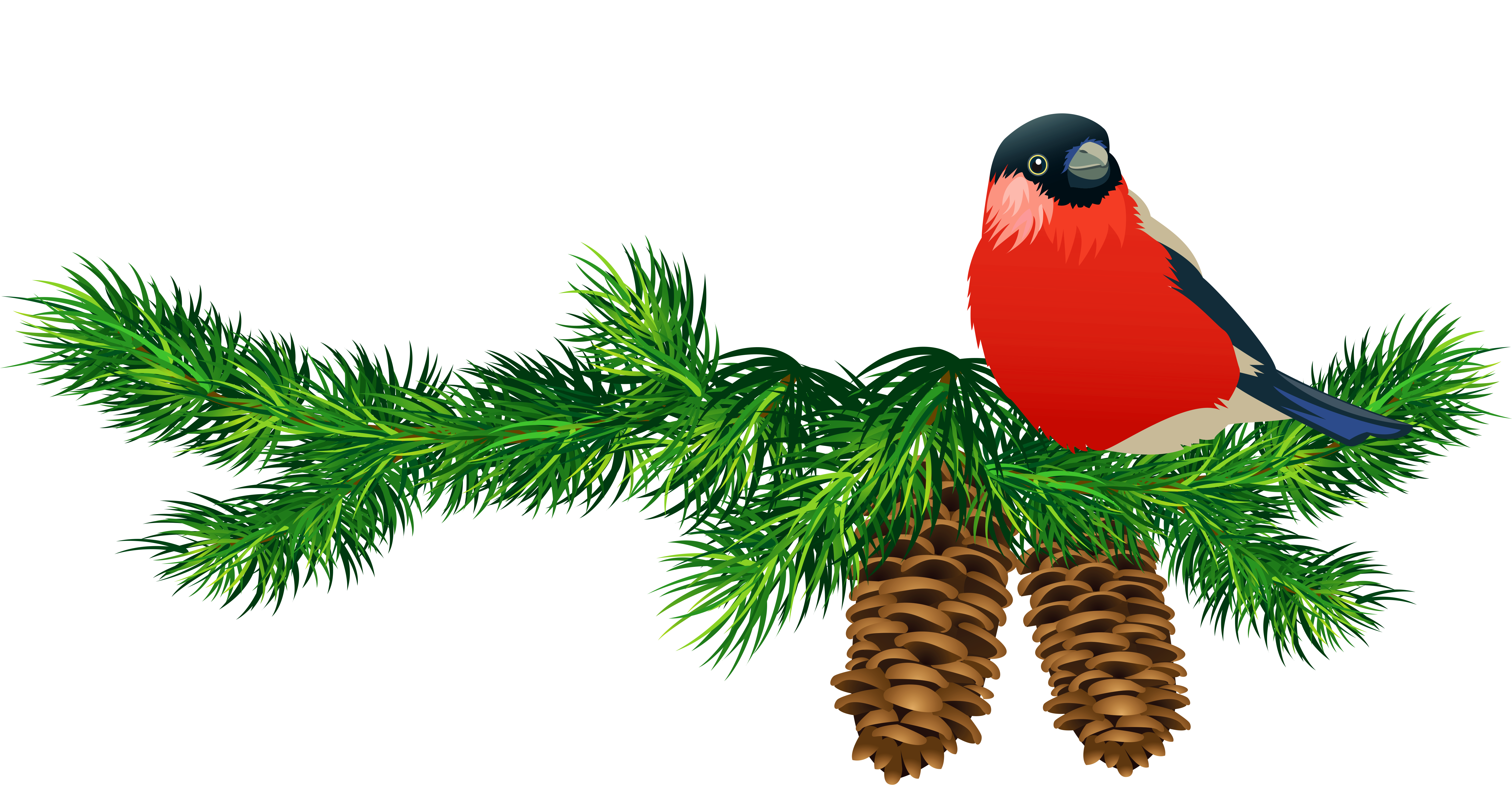 Christmas bird clipart jpg free library Transparent Pine Branch with Cones and Bird | Gallery Yopriceville ... jpg free library