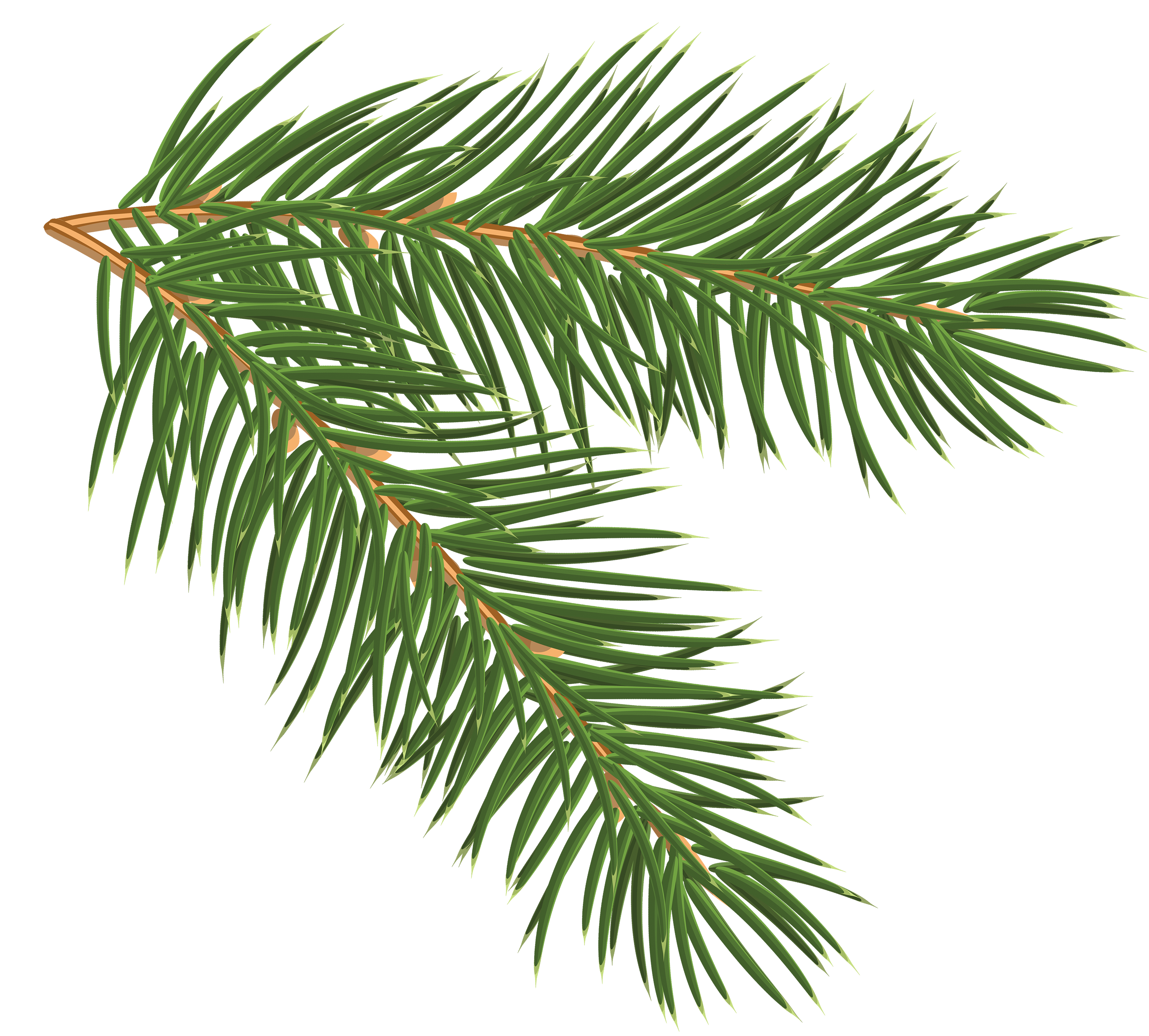 Christmas brunch clipart picture royalty free Pine Branch PNG Clip-Art Image | Gallery Yopriceville - High ... picture royalty free