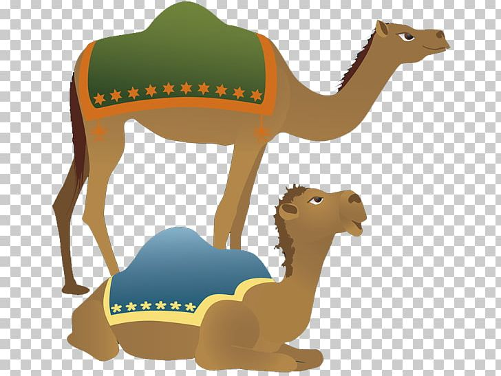 Christmas camel clipart picture jpg download Camel Holy Family Nativity Scene Christmas PNG, Clipart, Arabian ... jpg download