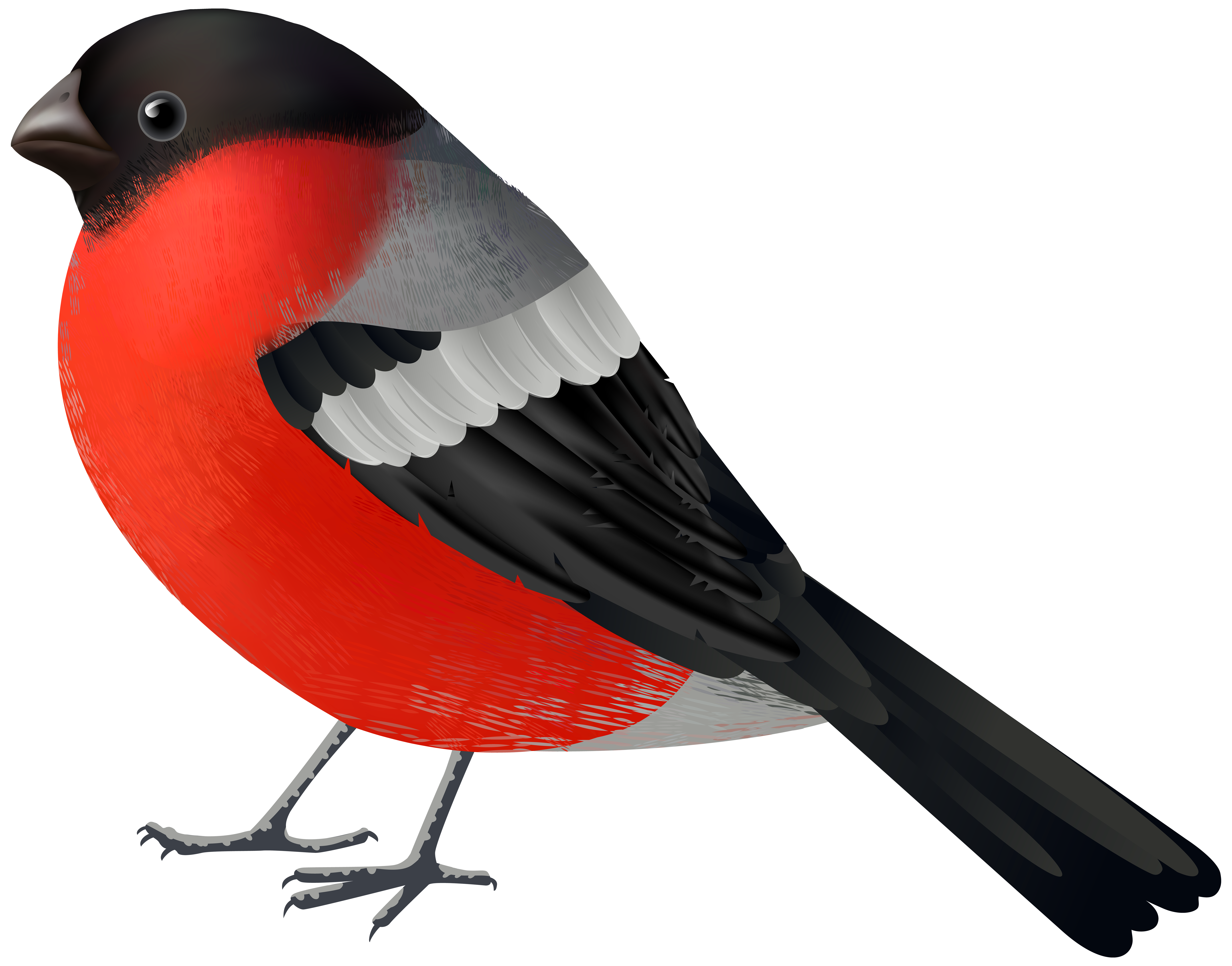 Christmas cardinal clipart clip free download Red Black Bird PNG Clip Art - Best WEB Clipart clip free download