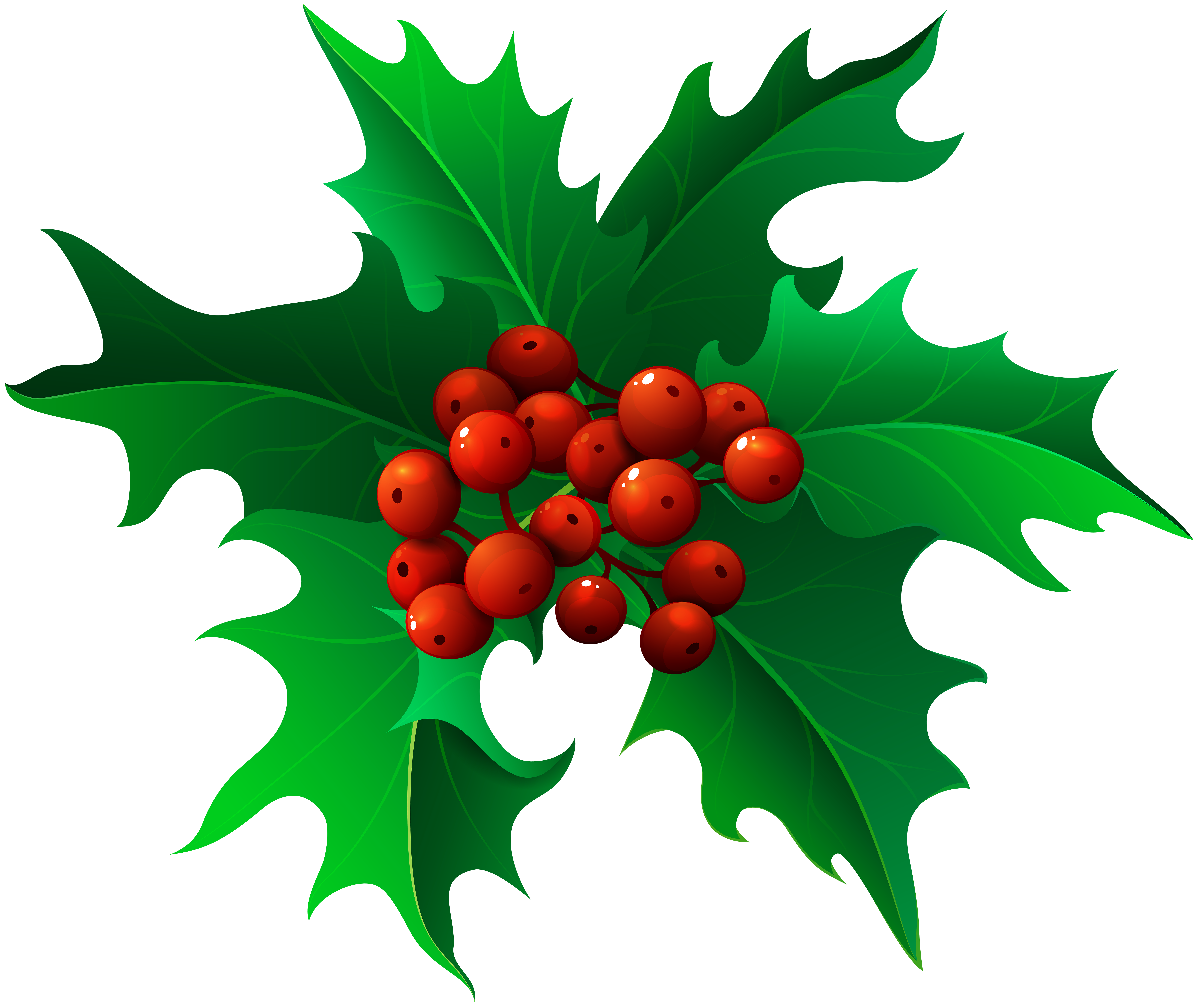 Christmas clipart holly jpg library library Christmas Holly Mistletoe Transparent PNG Clip Art | Gallery ... jpg library library