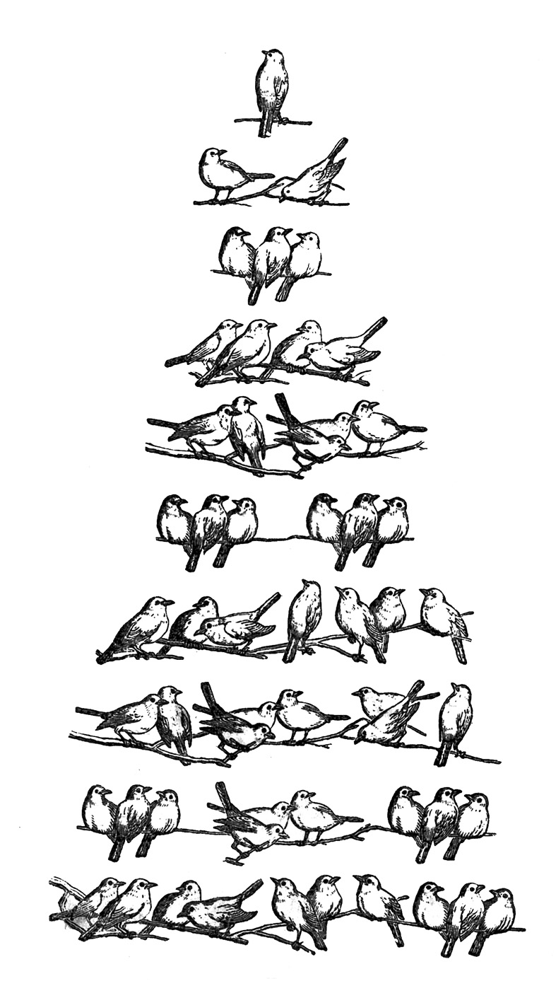 Clipartfest bird tree birds. Christmas clipart row graphics