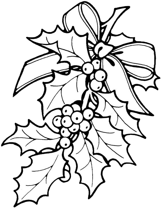 Christmas clipart to color png royalty free printable christmas ornament patterns | Christmas Holly Coloring ... png royalty free