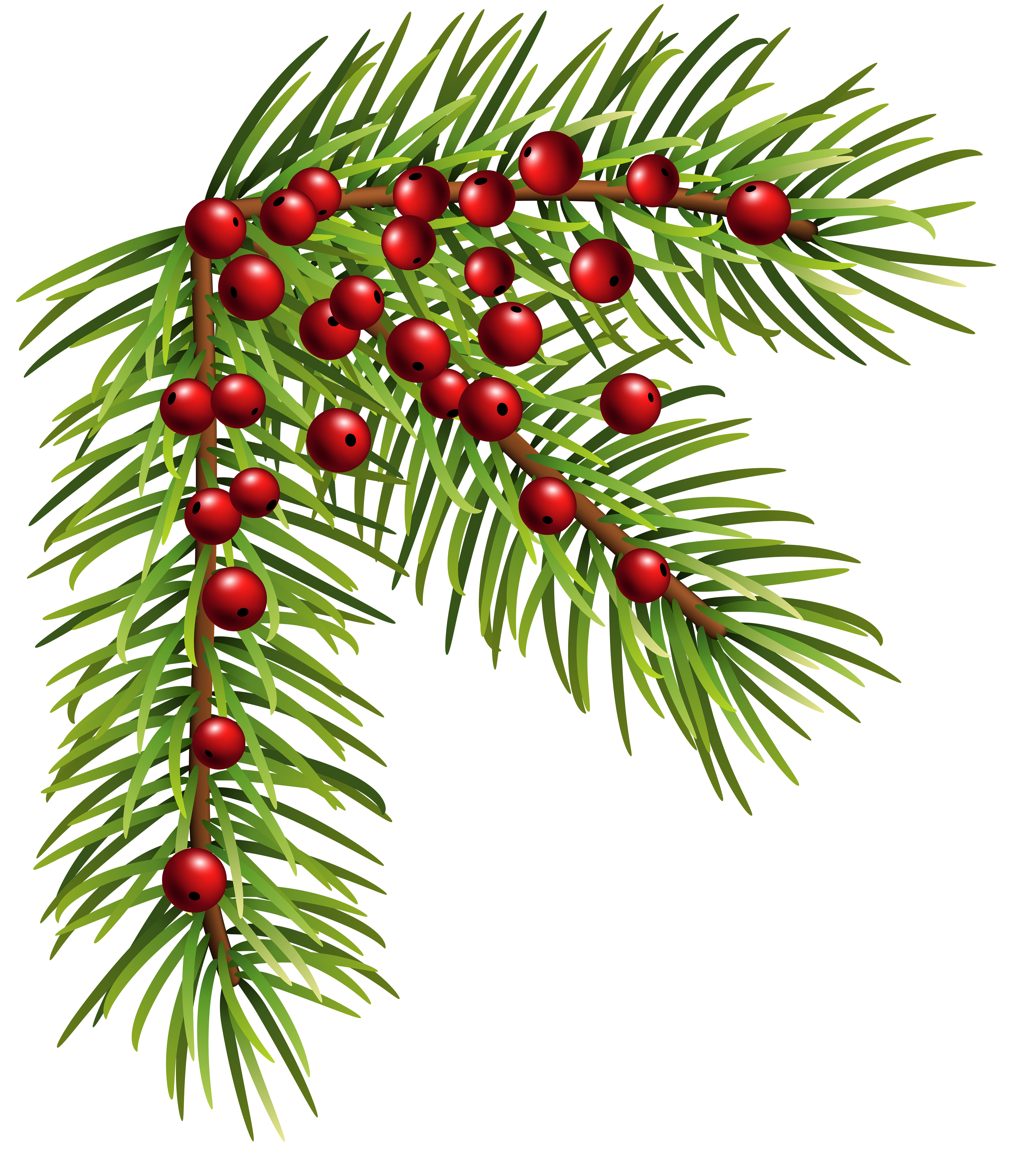 Christmas corner clipart picture royalty free library Christmas Pine Corner PNG Clip Art Image | Gallery Yopriceville ... picture royalty free library