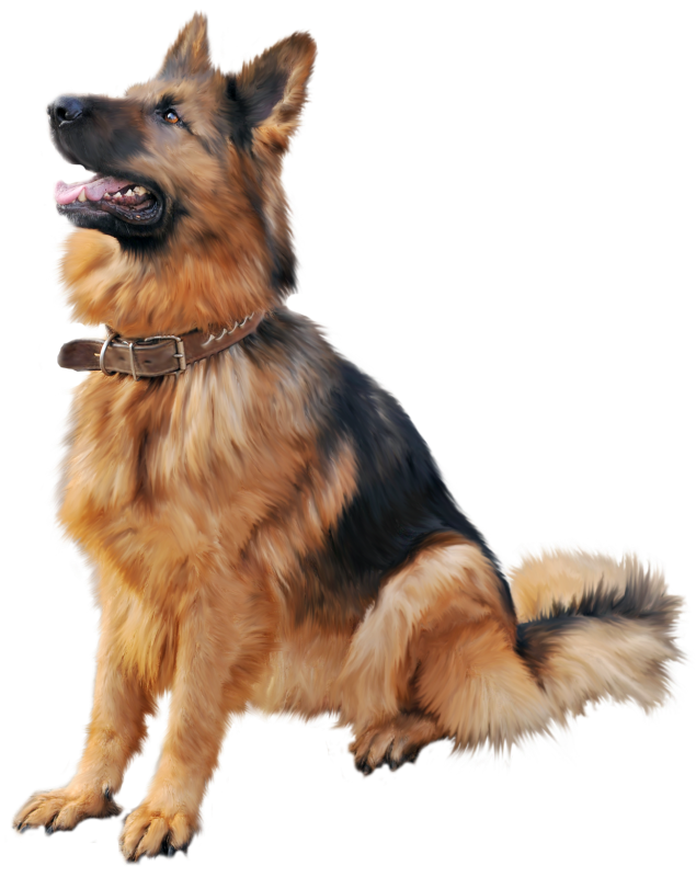 German shepherd dog clipart svg free stock German Shepherd Dog PNG Clipart - Best WEB Clipart svg free stock