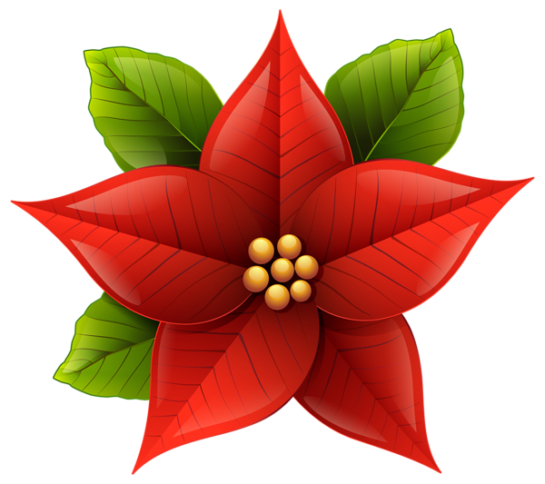December flower clipart png download Clipart Poinsettia Flower at GetDrawings.com | Free for personal use ... png download