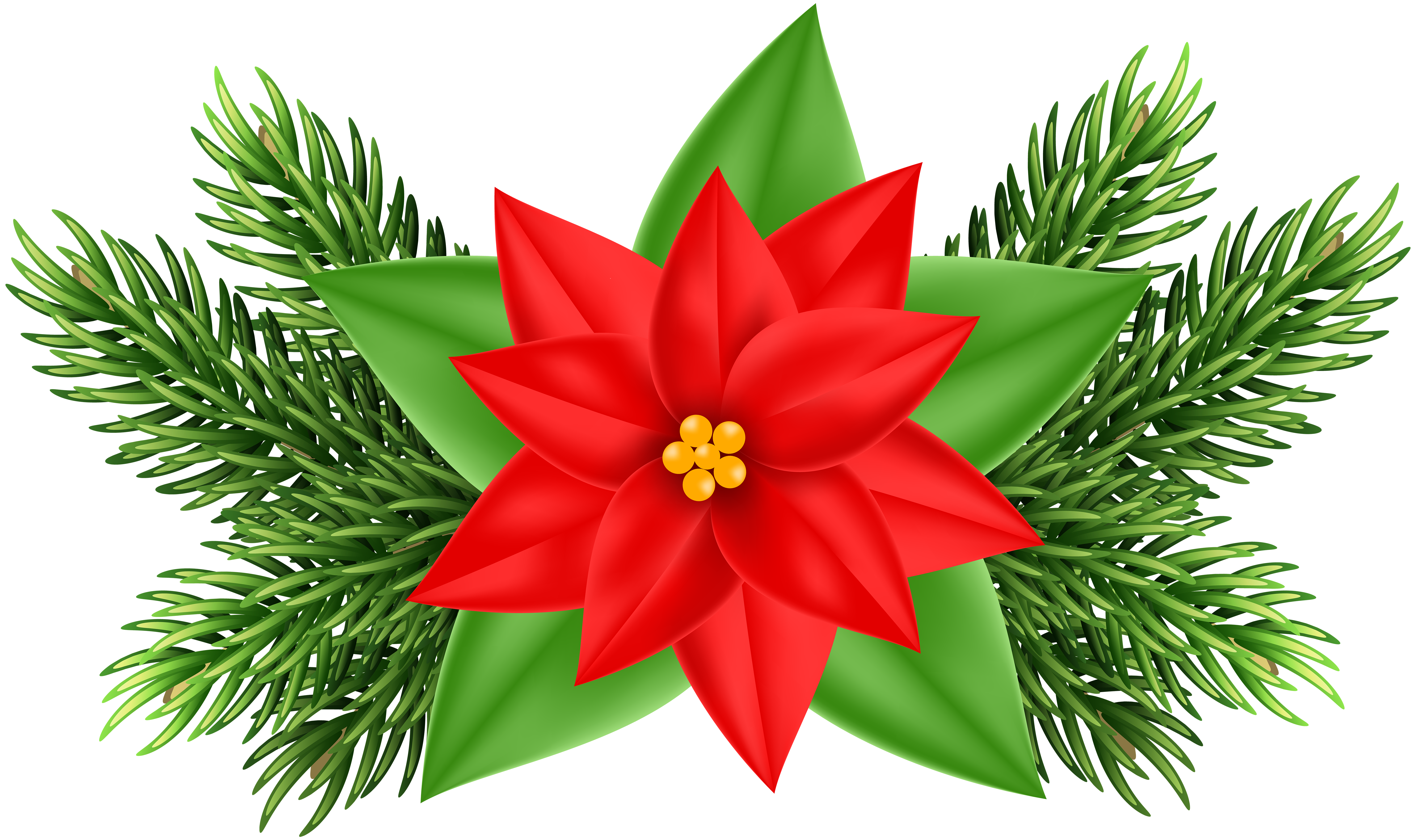 Clipart poinsettia flower image library library Clipart Poinsettia Flower at GetDrawings.com | Free for personal use ... image library library