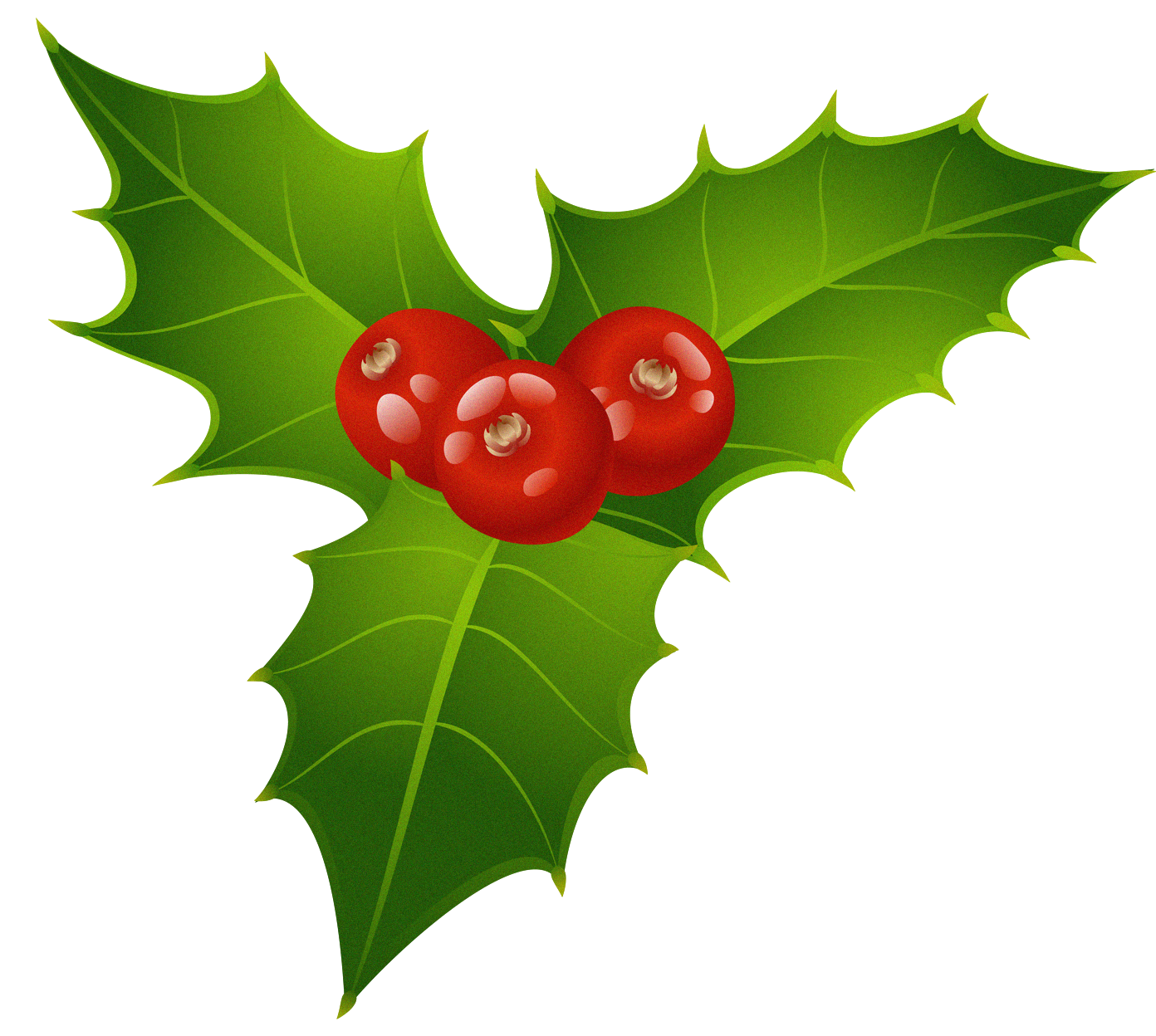 Christmas flowers clipart picture library download Christmas Mistletoe PNG Clipart   Gallery Yopriceville - High ... picture library download