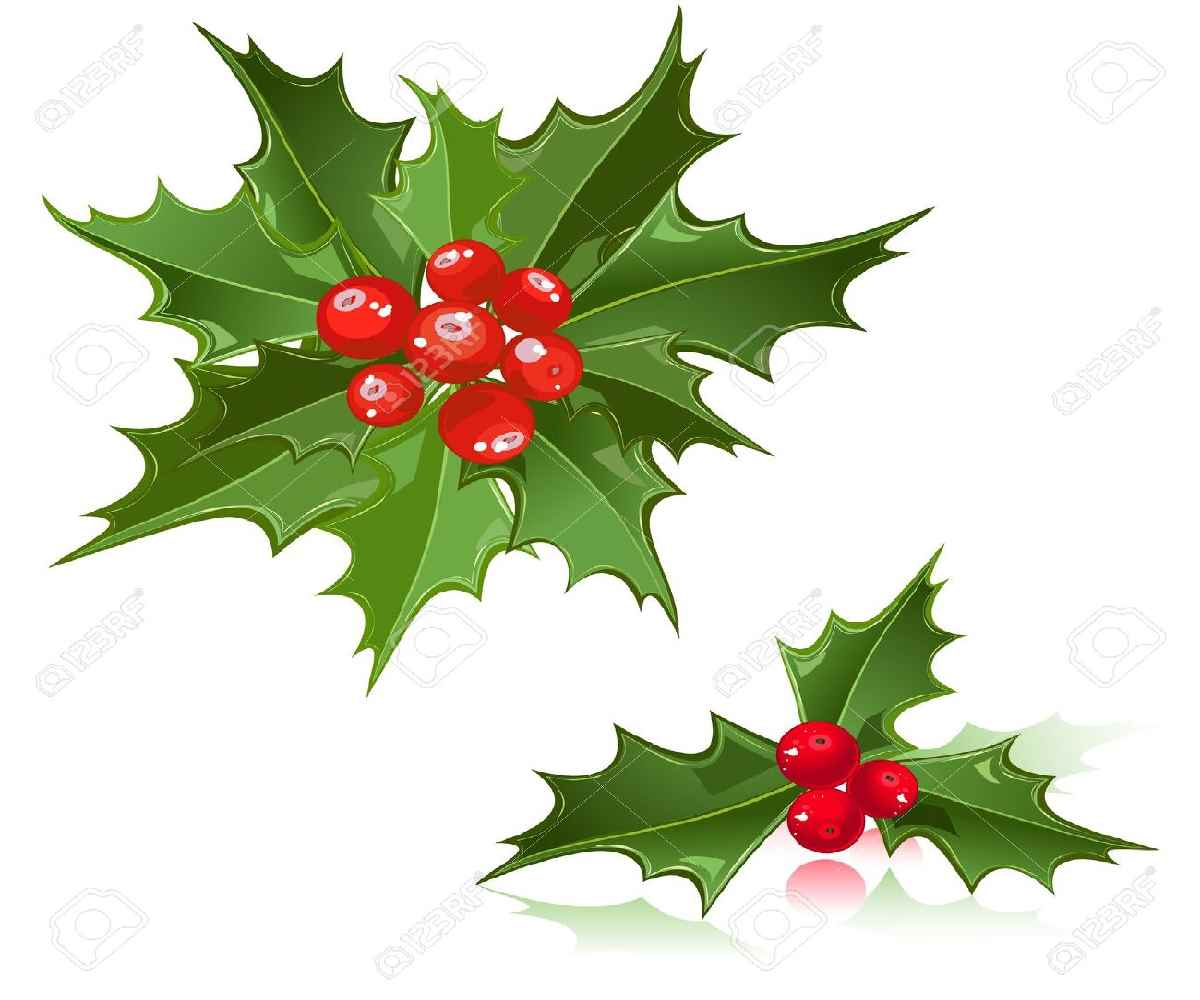 Clipartfest table . Christmas flowers free clipart