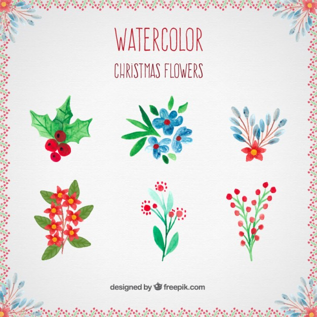 Christmas flowers pictures free image transparent download Watercolor christmas flowers collection Vector   Free Download image transparent download