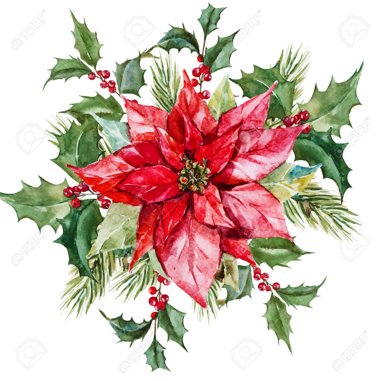 Christmas flowers pictures free image stock Christmas Flowers Images & Stock Pictures. Royalty Free Christmas ... image stock