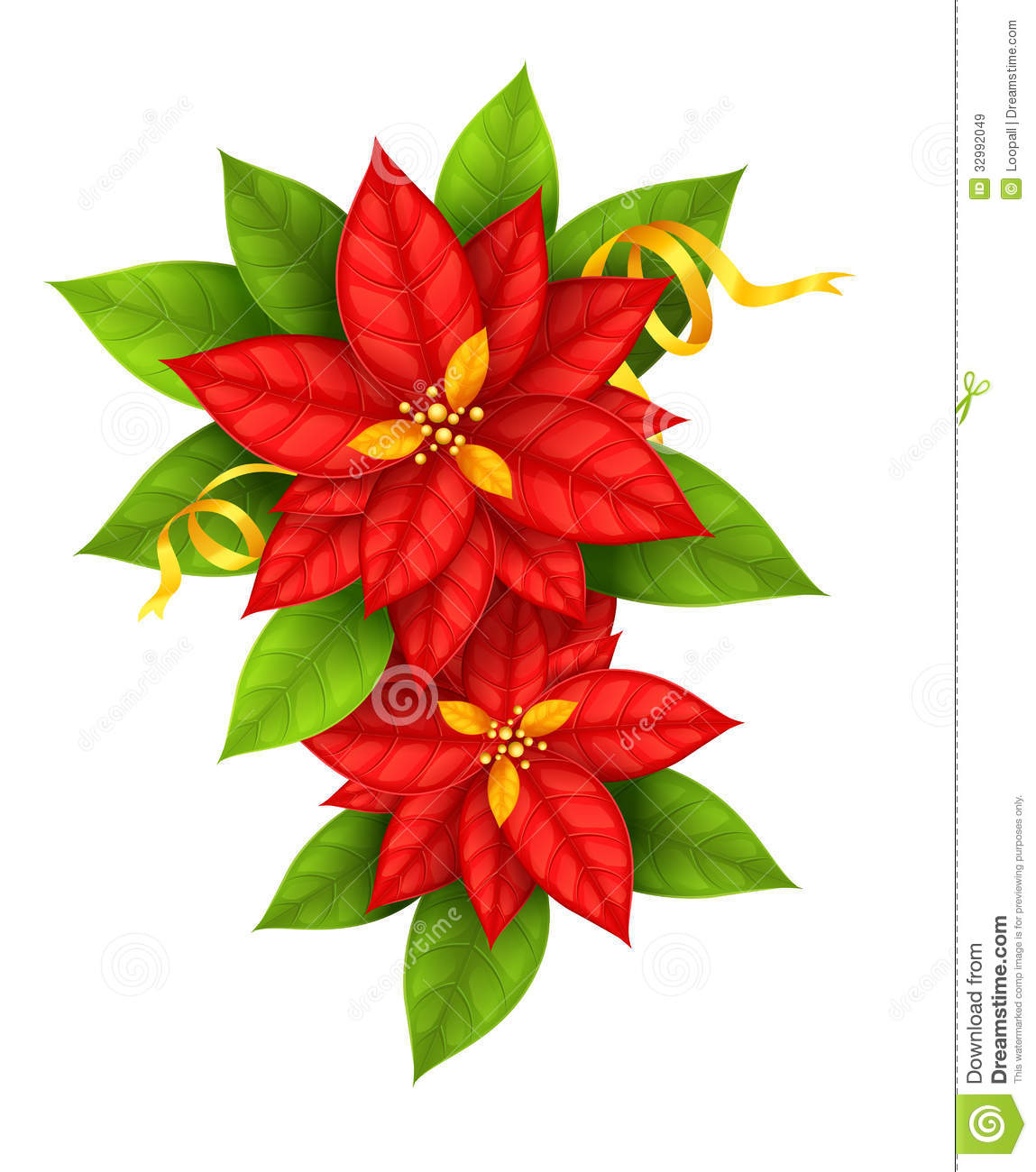 Christmas flowers pictures free clip art royalty free library Christmas Star Flowers Poinsettia With Gold Ribbon Royalty Free ... clip art royalty free library