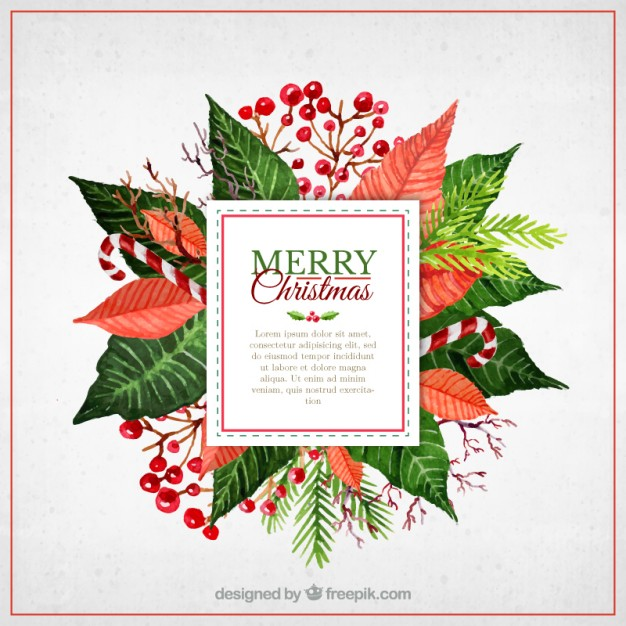 Christmas flowers pictures free picture royalty free stock Christmas Flower Vectors, Photos and PSD files | Free Download picture royalty free stock