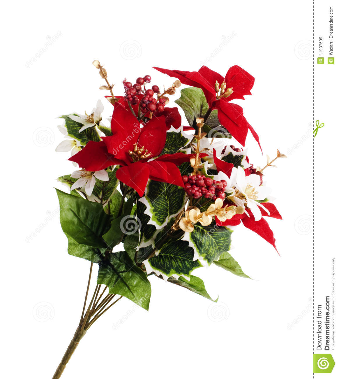 Christmas flowers pictures free clipart freeuse download Spray Of Christmas Flowers Royalty Free Stock Images - Image: 11937609 clipart freeuse download