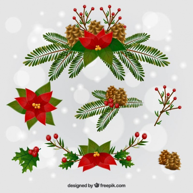 Christmas flowers pictures free jpg black and white library Cute christmas flowers Vector   Free Download jpg black and white library