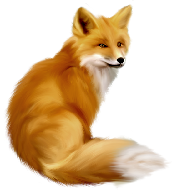Christmas fox clipart svg transparent Painted Fox Clipart | Gallery Yopriceville - High-Quality Images ... svg transparent