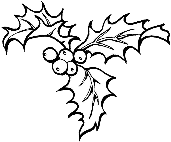 Christmas holly clipart black and white jpg library library Christmas Holly Drawing at GetDrawings.com | Free for personal use ... jpg library library