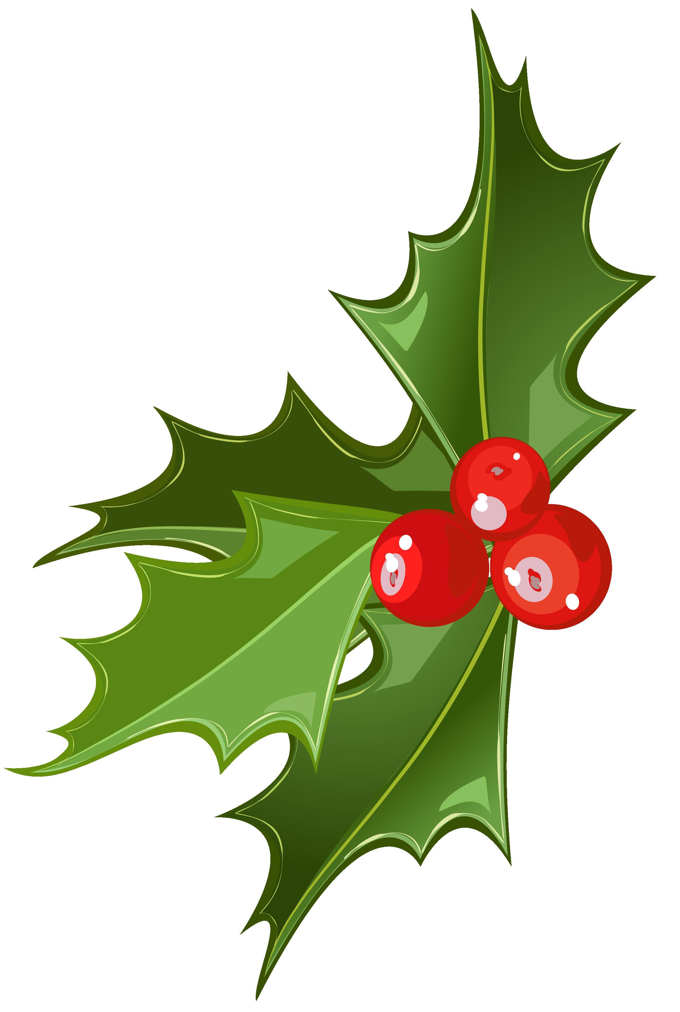 Christmas mistletoe clipart banner freeuse download Christmas Mistletoe Picture | Gallery Yopriceville - High-Quality ... banner freeuse download