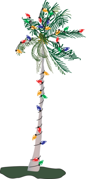 Christmas palm tree clipart free picture transparent download Christmas palm tree clipart images gallery for free download ... picture transparent download