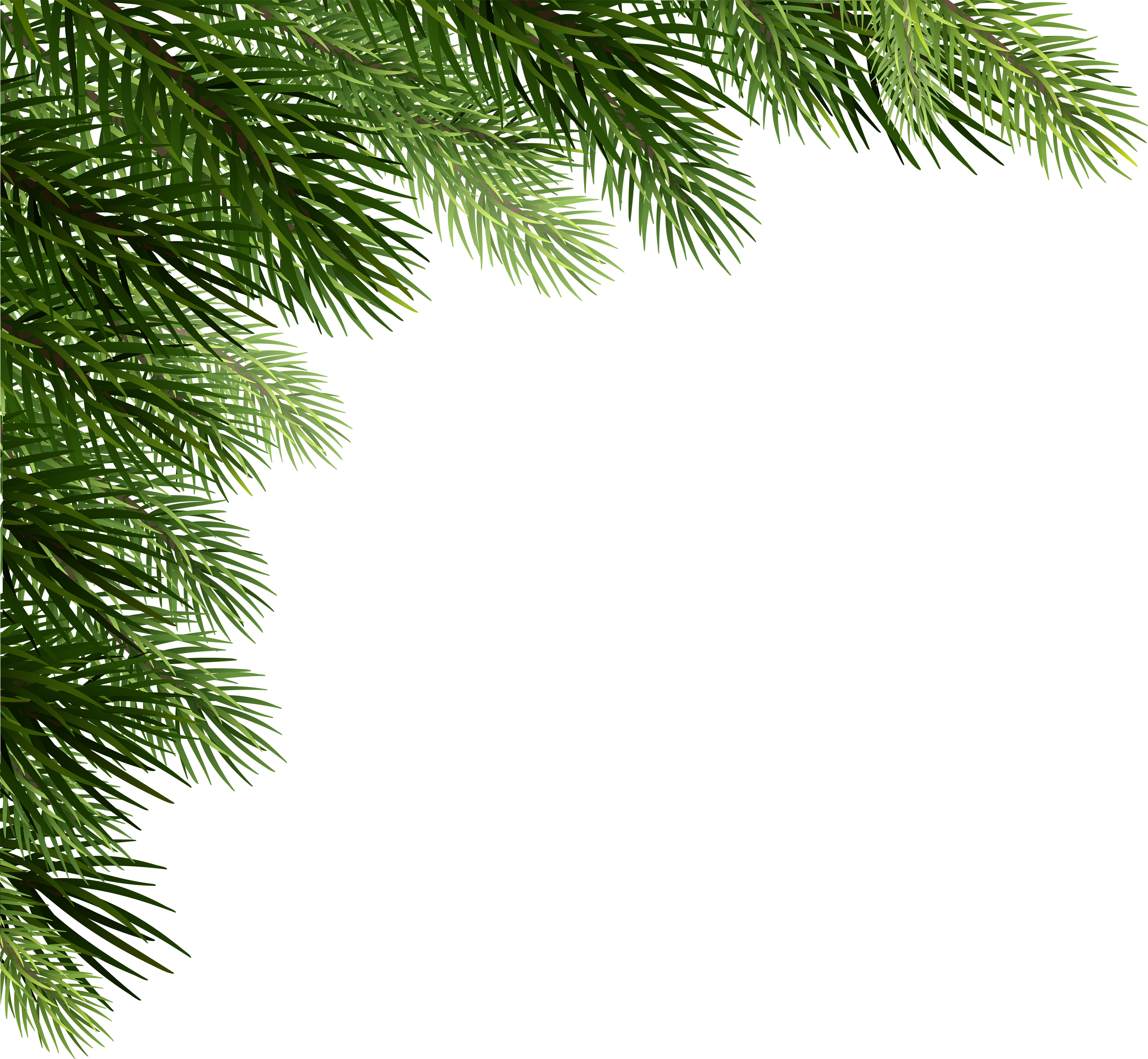 Christmas pine boughs corner black and white clipart png Christmas Pine Png - Corner Christmas Tree Png , Transparent Cartoon ... png