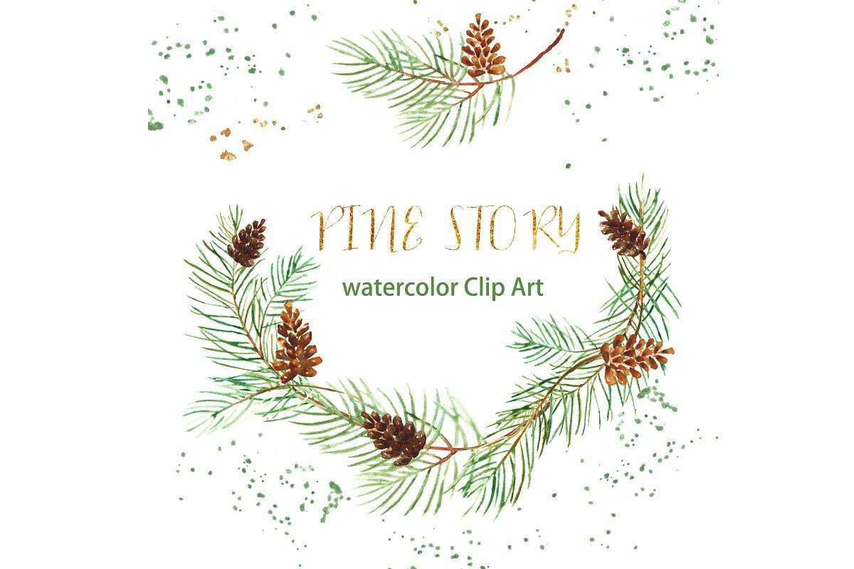 Watercolor pine cones clipart graphic Pine branches. Watercolor Clipart. graphic