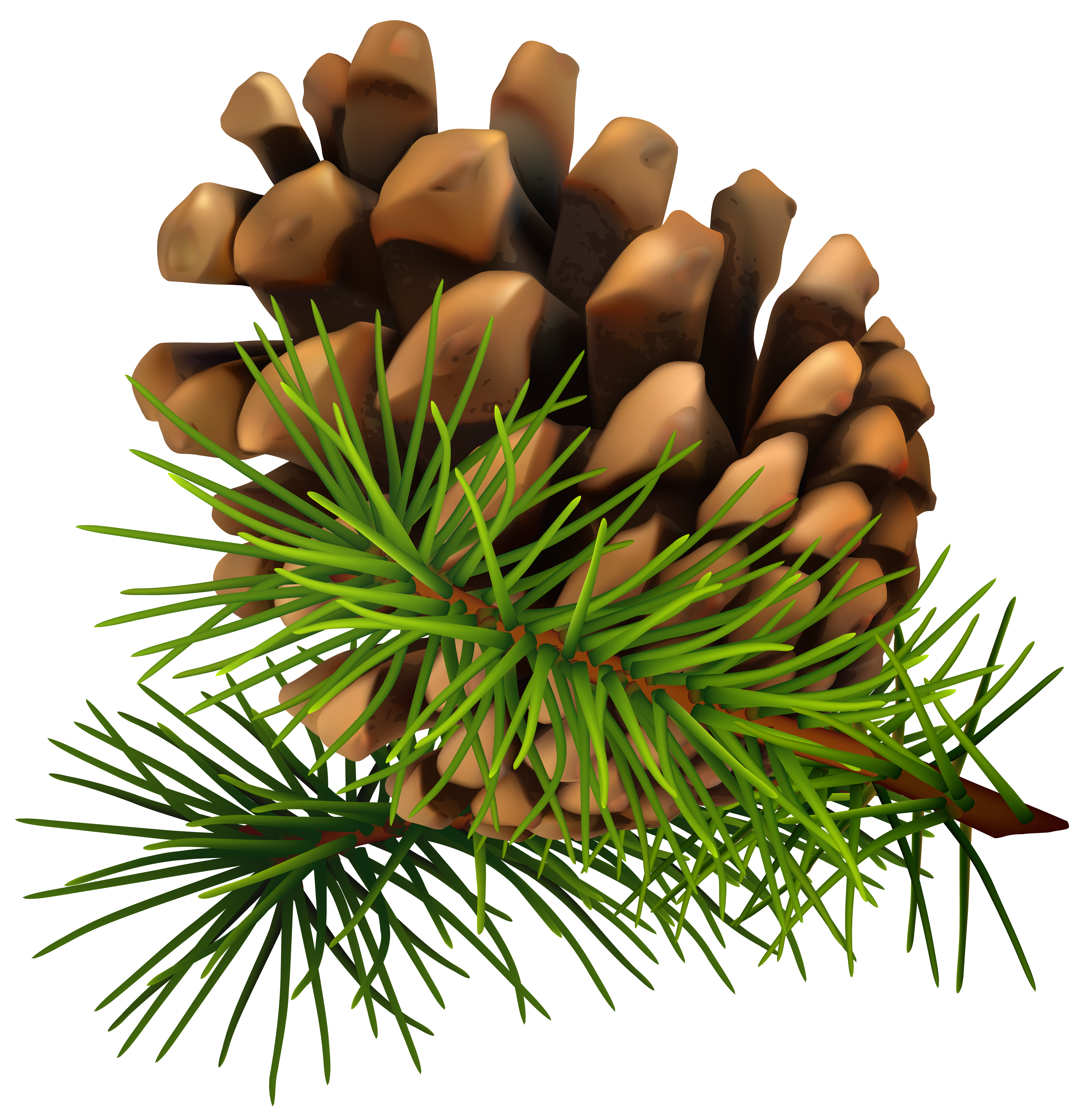 Christmas pine cone clipart jpg royalty free Pine Cone PNG Clip-Art Image | Gallery Yopriceville - High-Quality ... jpg royalty free