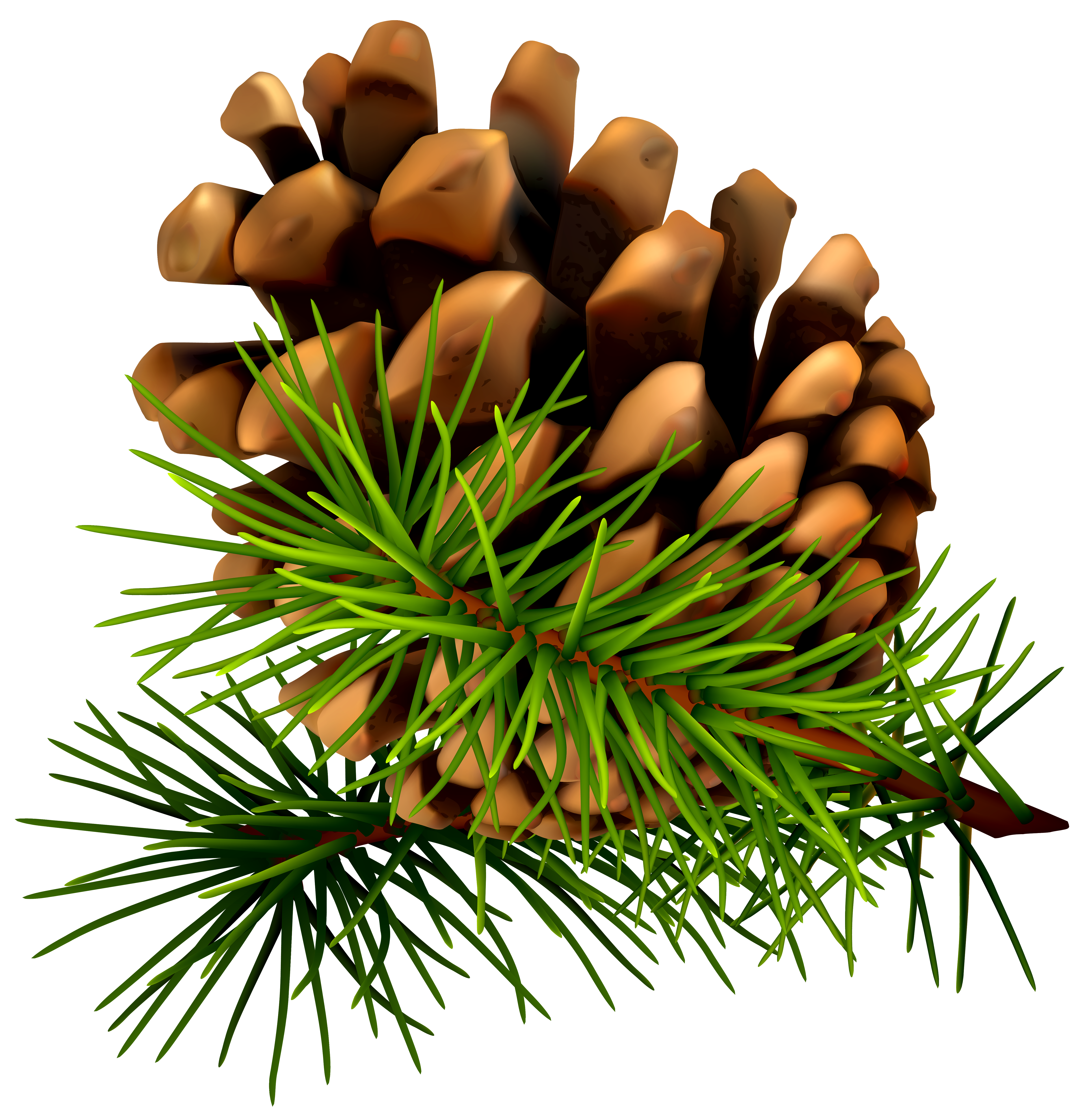 Christmas pinecone clipart royalty free download 9 Great Pine Cone Table Decorations royalty free download