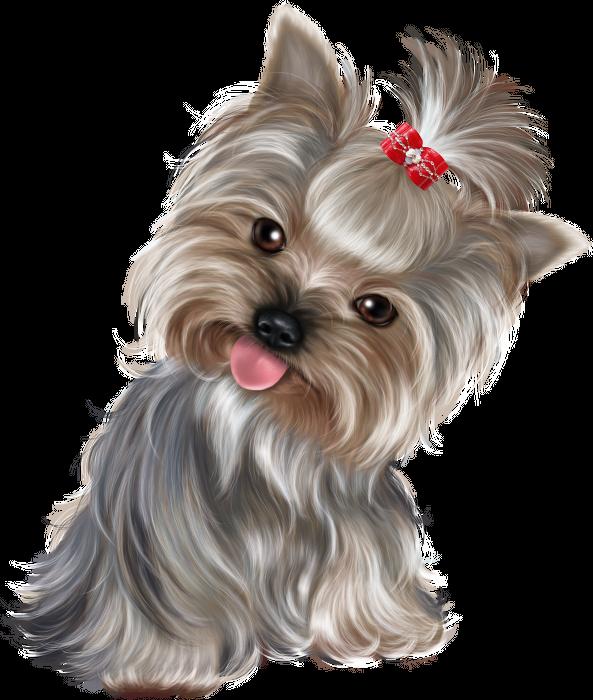 Scottie dog clipart border banner stock Pin by Elena Vasileva on Животные | Pinterest | Scrapbook layouts ... banner stock