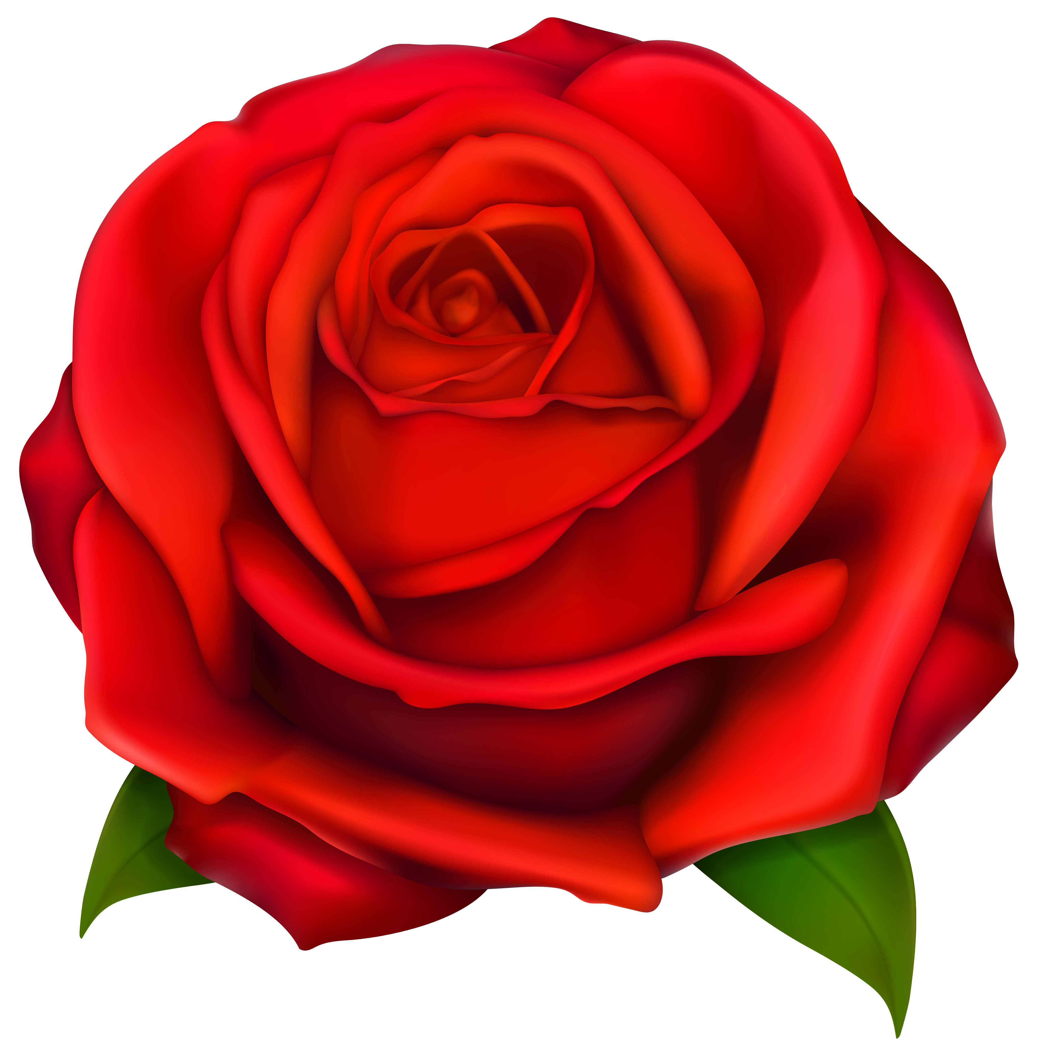 Clipart of rose flower svg royalty free Image of Clip Art Red Rose #7092, Red Roses Clip Art Images Free ... svg royalty free