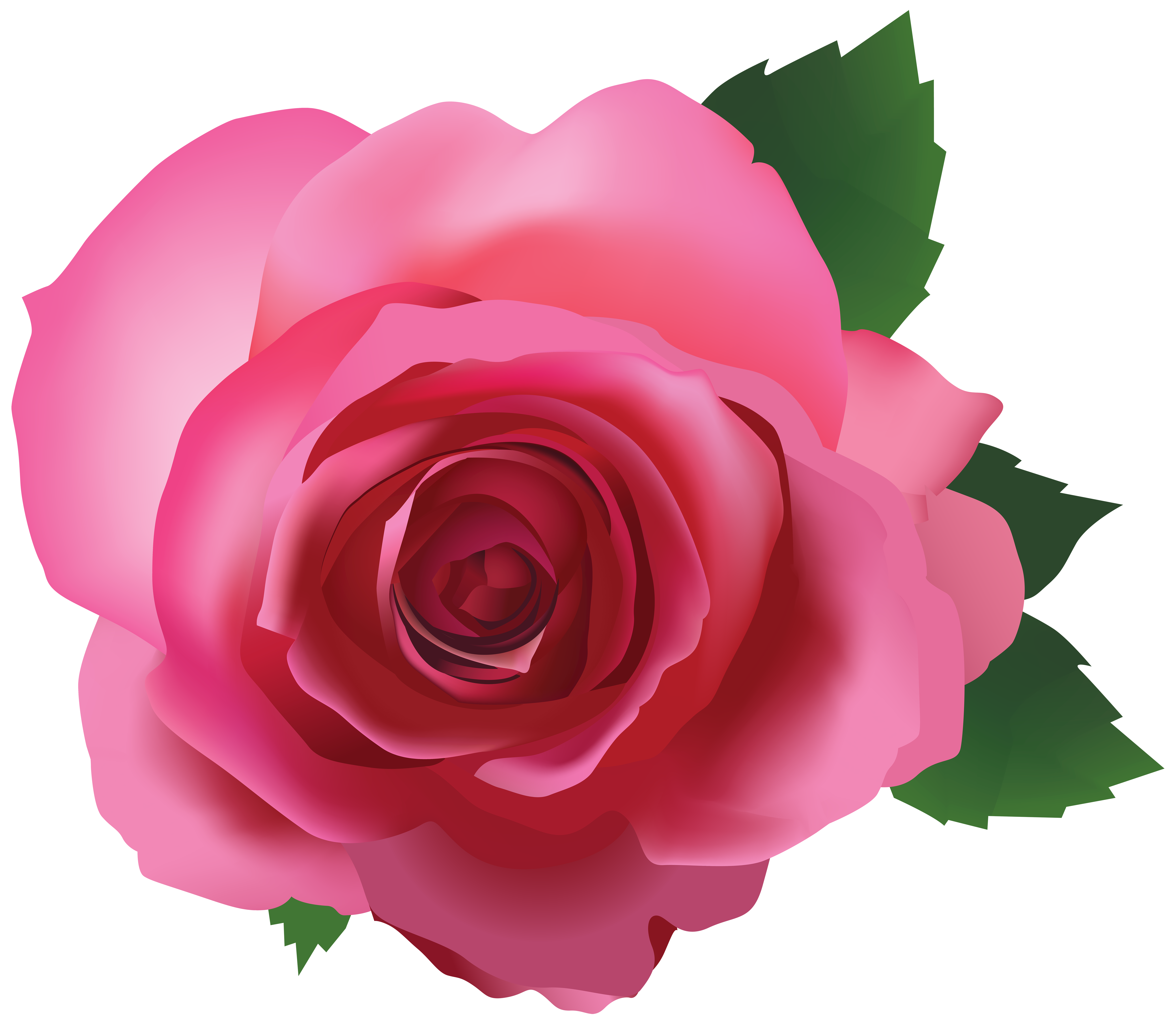 Christmas rose clipart vector free stock Pink Rose Transparent PNG Image   Gallery Yopriceville - High ... vector free stock