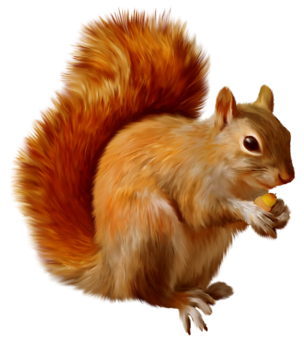 Christmas squirrel clipart vector stock Squirrel Clipart | Gallery Yopriceville - High-Quality Images and ... vector stock