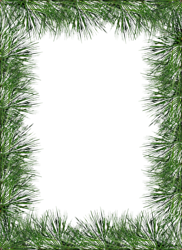 Pine tree border clipart picture library stock Transparent PNG Pine Photo Frame | Stationary Borders | Pinterest ... picture library stock