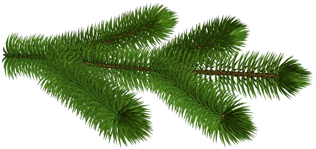 Pine tree branch clipart png library stock Transparent Pine Branch 3D Clipart Picture | Gallery Yopriceville ... png library stock