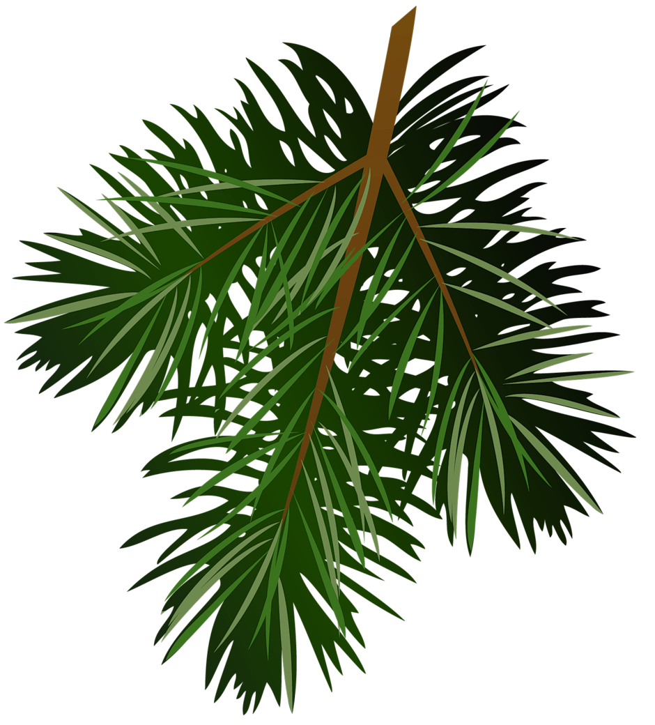 Christmas tree branch clipart graphic free library Transparent Pine Branch PNG Picture | Gallery Yopriceville - High ... graphic free library