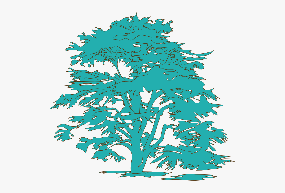 Christmas tree clipart color svg free stock Tree Drawing Color Png #865752 - Free Cliparts on ClipartWiki svg free stock