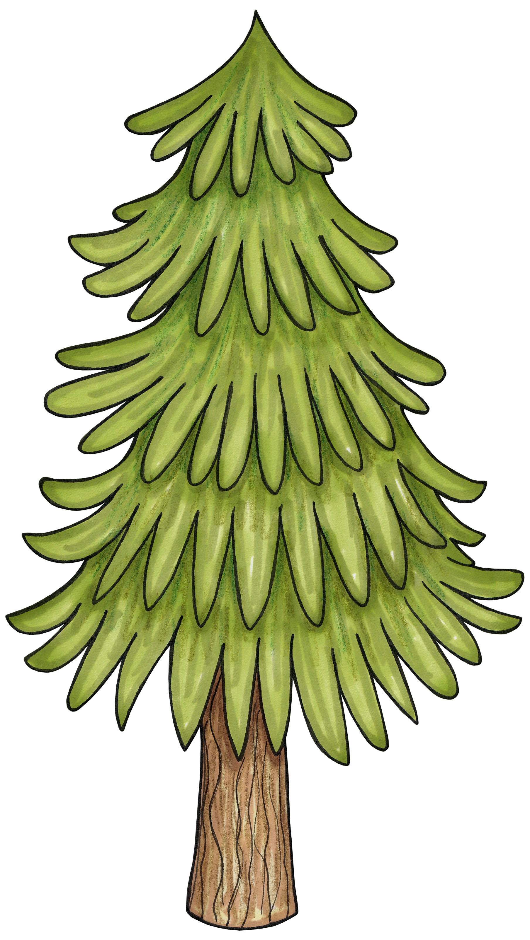 Spruce tree clipart picture transparent download Tree for a woodlands enchanted forest party | Woodlands | Pinterest ... picture transparent download