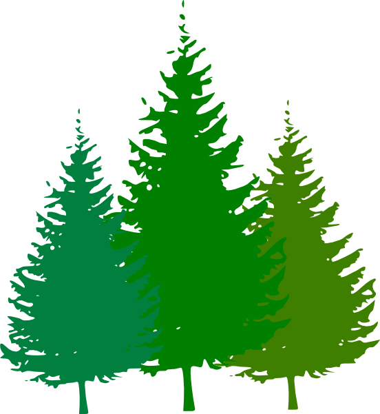 forest tree clipart #10