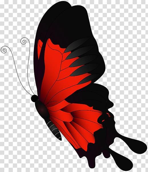 Chroma clipart picture transparent download Butterfly Chroma key Flight , red butterfly transparent background ... picture transparent download