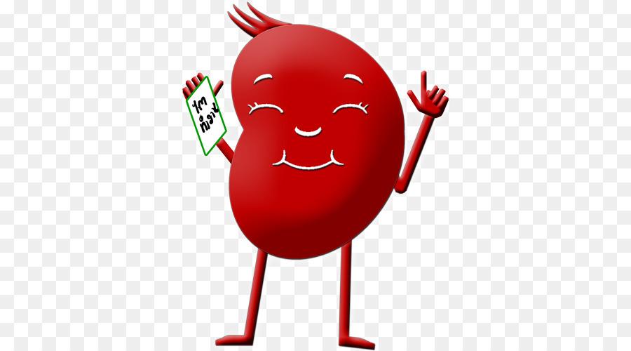 Chronic kidney disease clipart image freeuse Clip art Chronic kidney disease - khonkaen image freeuse