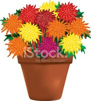 Chrysanthemums in pot clipart royalty free stock Multi Colored Chrysanthemums IN A Clay Pot stock vectors - Clipart.me royalty free stock