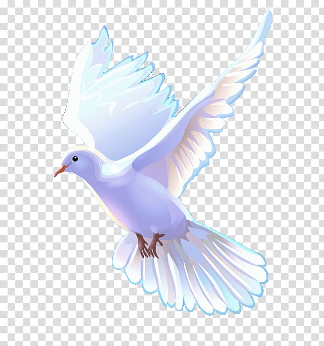 Church doves clipart png library White dove art, Bible Christian Church Christianity Apostolic Church ... png library