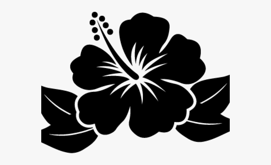 Circle hawaiian leaves black and white clipart clip free stock Hibiscus Clipart December Flower - Hawaiian Flower Cartoon Pink ... clip free stock