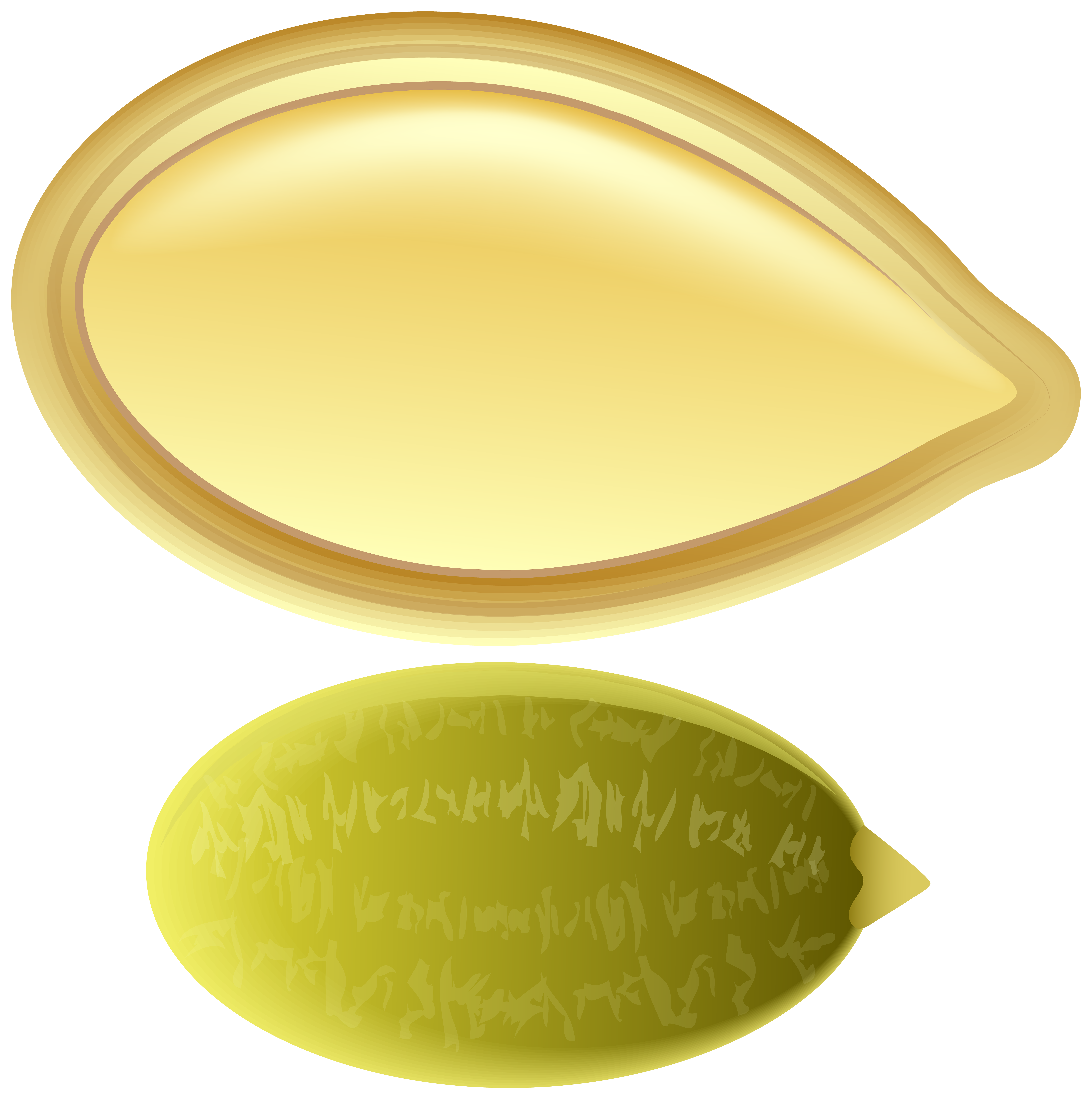 Free pumpkin seed clipart svg download Pumpkin Seed PNG Clip Art | Gallery Yopriceville - High-Quality ... svg download