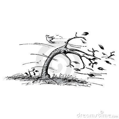 Wind blow marks clipart banner black and white stock Tree In Black And White | of a tree blowing in the wind. This is the ... banner black and white stock