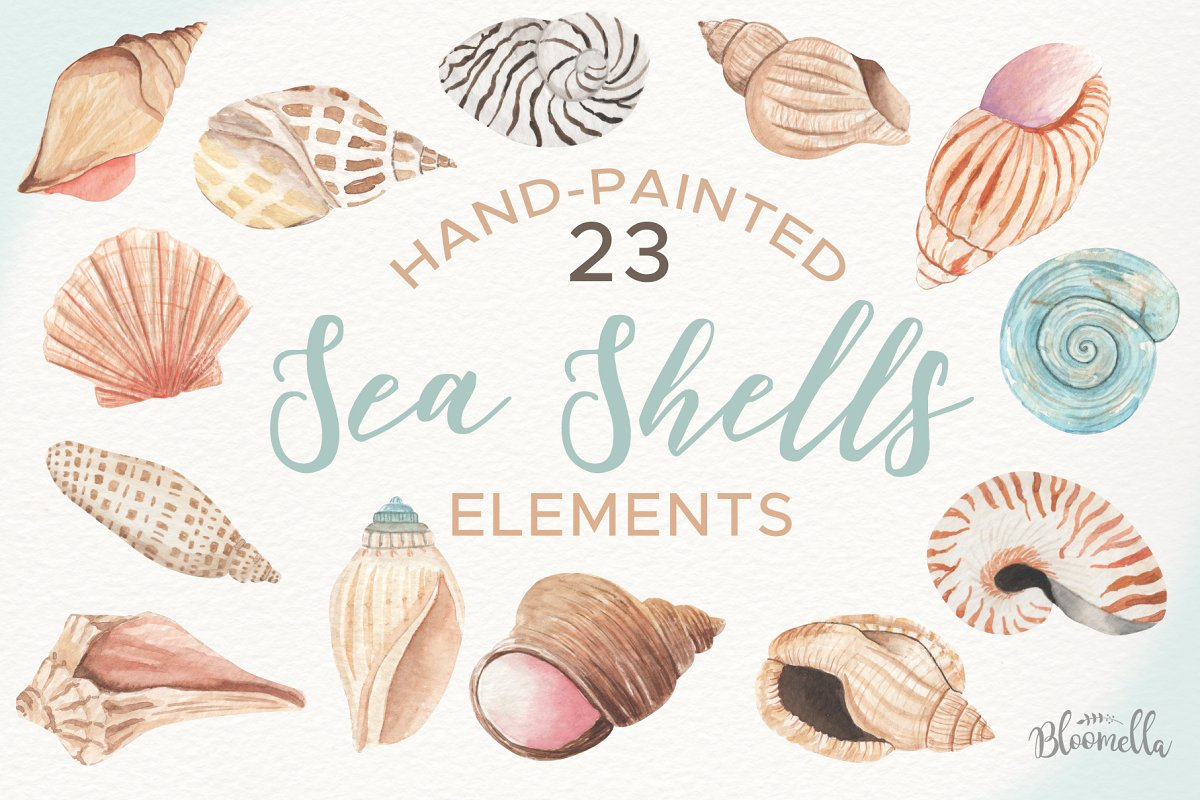 Clam watercolor clipart jpg black and white library Watercolor Sea Shells Clipart Set ~ Illustrations ~ Creative Market jpg black and white library