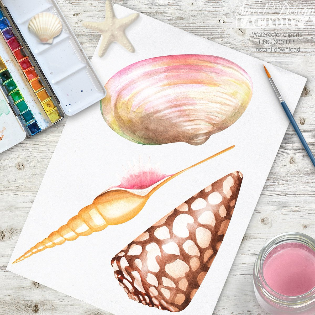 Clam watercolor clipart banner free stock beachclipart hashtag on Twitter banner free stock