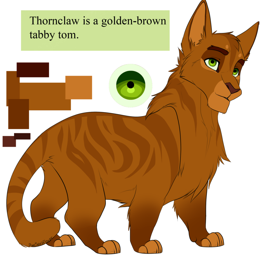 Clean cat memes clipart clip art freeuse stock Thornclaw by PureSpiritFlower.deviantart.com on @DeviantArt ... clip art freeuse stock
